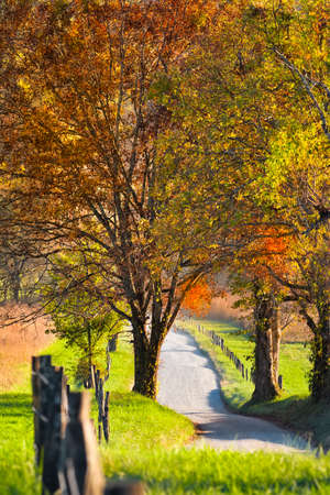 Late afternoon on a quiet country road in Cades Cove, Great Smoky Mountains National Park