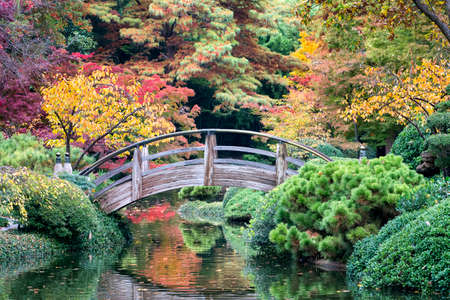 fort worth: Arched wooden bridge accented by Texas fall colors Stock Photo