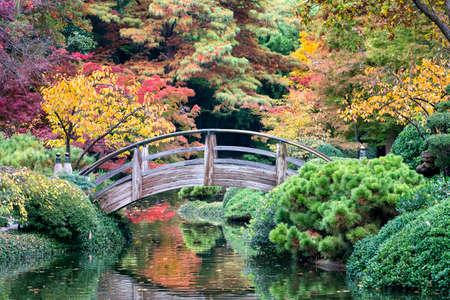 ponte giapponese: Arco ponte di legno accentuato da colori autunnali Texas
