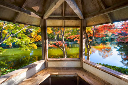 fort worth: A burst of fall color with pond reflections, as viewed from inside a gazebo on a late afternoon