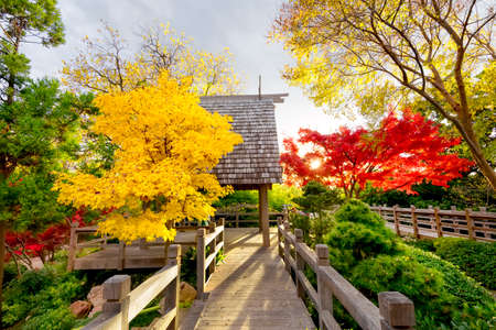 fort worth: Shinto roof line highlighting the Pavilion Deck at the Fort Worth Japanese Gardens during peak autumn colors