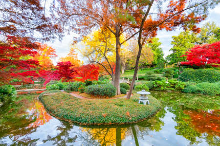 fort worth: A burst of fall color with pond reflections