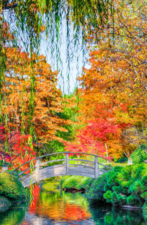 weeping willow: Arched wooden bridge accented by Texas fall colors Stock Photo