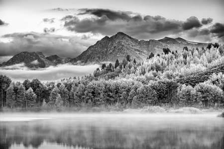 oxbow bend: Misty dawn at Oxbow Bend on the Snake River in Wyoming