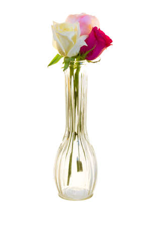 long stem roses: Red, white, and lavender long stem roses in a vase isolated on a white background