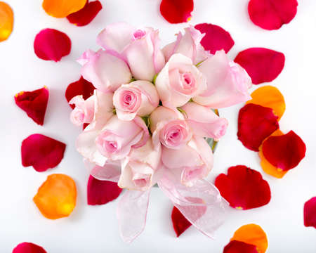 Collection of multicolored rose petals arranged with a vase containing pink long-stem roses on a white background photo