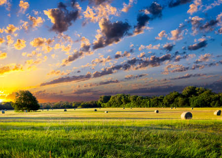 Tranquil Texas meadow at sunrise with hay bales strewn across the landscape photo