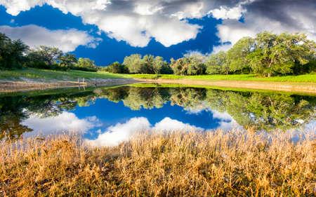 화창한 여름 날에 반사와 함께 평화로운 농촌 연못 스톡 콘텐츠