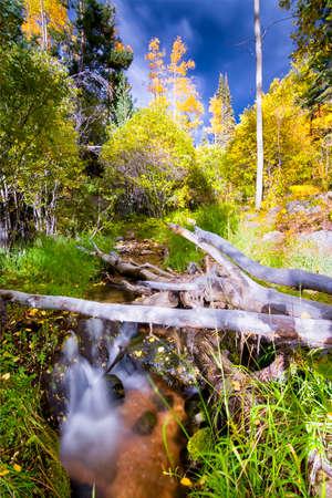 fe: Silky flowing stream surrounded by fall foliage near Santa Fe, NM