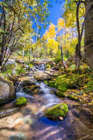 Silky flowing stream surrounded by fall foliage near Santa Fe, NM photo