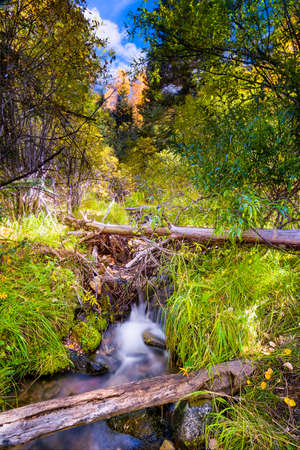 fe: Silky flowing stream accented by fall foliage near Santa Fe, NM Stock Photo