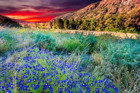nm: Colorful morning sky over Bandelier, NM Stock Photo