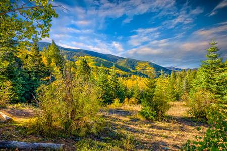 Beautiful fall colors in the mountains of the Santa Fe Ski Basin