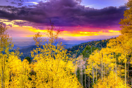 New Mexico fall mountain sunset  featuring golden aspens and rays of sunlight