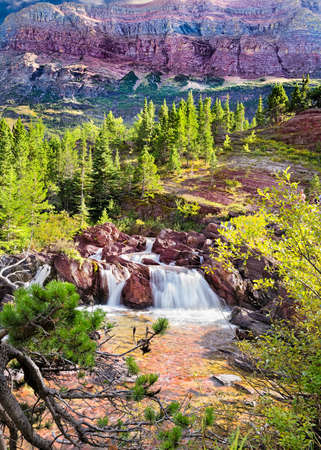 pine creek: Cascading stream on Redrock Trail in east Glacier National Park, Montana