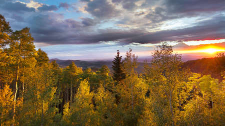 New Mexico fall mountain sunset  featuring golden aspens and vivid sunlight