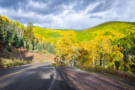 Autumn aspen colors on a rural road in northern New Mexico photo
