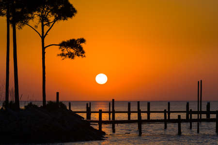 gulf of mexico: Spring sunrise over the Gulf of Mexico with silhouetted trees and a pier in the foreground