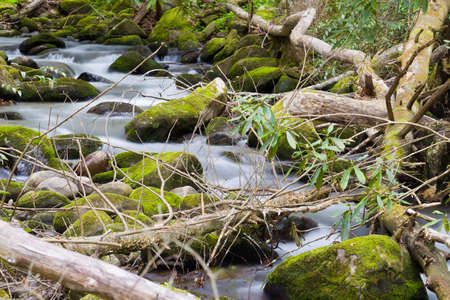 captured: Silky stream captured in the Smoky Mountains during springtime Stock Photo