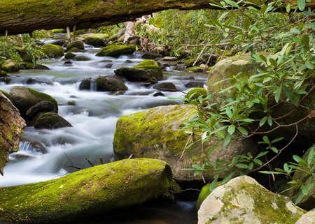 smoky mountains: Silky stream captured in the Smoky Mountains during springtime Stock Photo