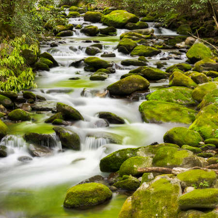 great smokies: Silky stream captured in the Smoky Mountains during springtime Stock Photo