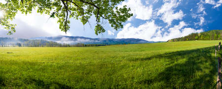 smokies: Mid spring morning on a quiet country road in Cades Cove, Great Smoky Mountains National Park Stock Photo