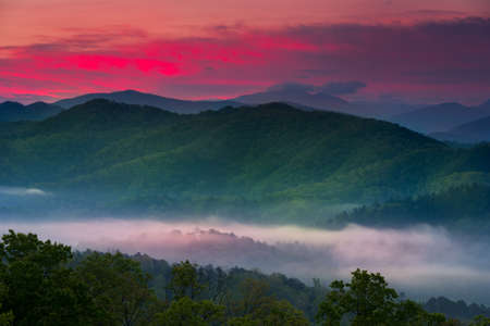 smokies: Spring sunrise view of layered mist in the  mountains of Great Smoky Mountains National Park