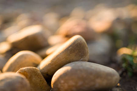 bathed: Collection of rocks bathed in early morning sunlight in a residential garden