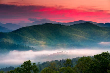 great smoky mountains national park: Spring sunrise view of layered mist in the  mountains of Great Smoky Mountains National Park