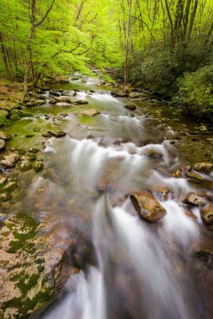 smoky mountains: Silky smooth stream in the Smoky Mountains
