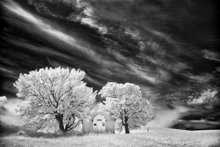 Tiny old church in a picturesque setting between two trees in the Palouse region of Idaho