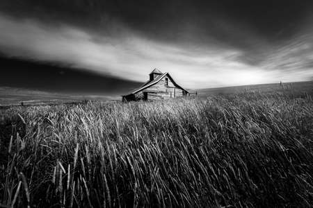 Abandoned farm building sitting in a tall grass field on a farm in Washington state Reklamní fotografie