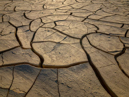 Cracked Mud Tiles in a Destrt Valley