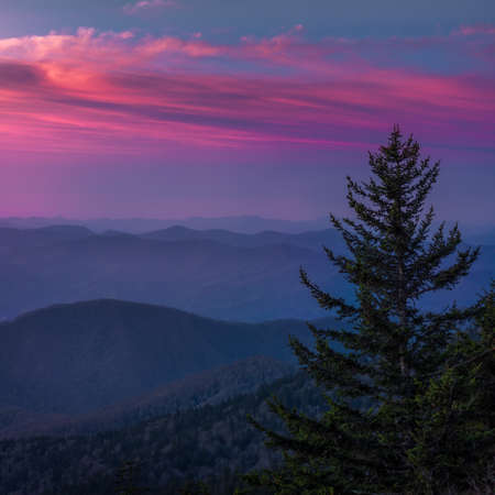 Clingmans Dome at Sunrise Under Beautiful Skies