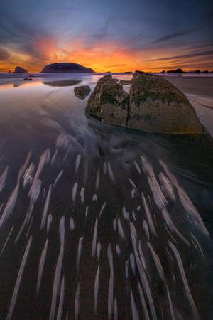 Golden Sunset on the Oregon Coast 版權商用圖片