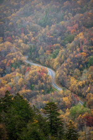 Winding Road Coursing Through Fall Colors