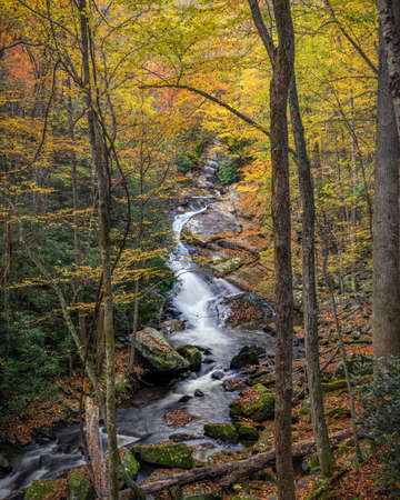 Gently Flowing Stream Coursing Through Fall Colors