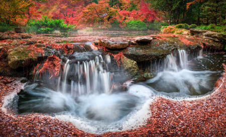 Fall Foliage and a Flowing Stream in the Japanese Garden 版權商用圖片