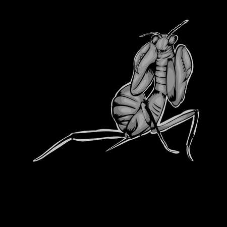 Simple design of illustration Praying mantis on black background