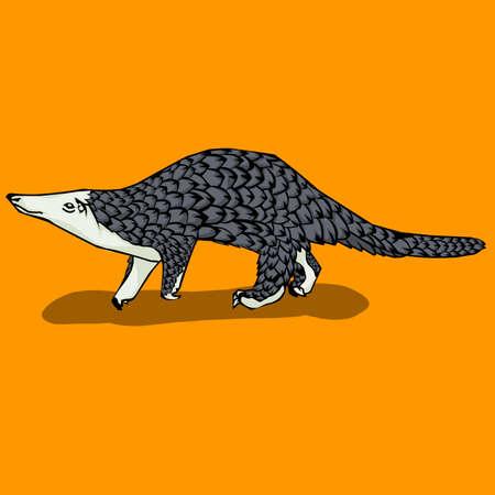 Simple design of illustration pangolin vector