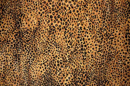 animal print: Animal Background Stampa