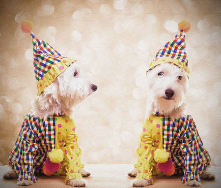 Circus Clown Dogs Vintage Feeling