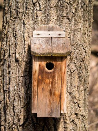 Wooden bird house on tree Stock fotó