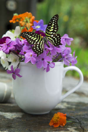 Beautiful wildflowers in cup with butterfly