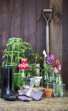 Gardening scene Stock fotó