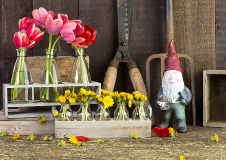 Potting の小屋の中の花 写真素材