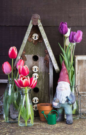 bard: Inside the garden shed Stock Photo