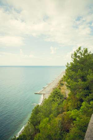 Beach. Sea. Greens. Trees. Horizon. Clouds