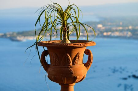 taormina: Panorama with vase on the Gulf of Taormina