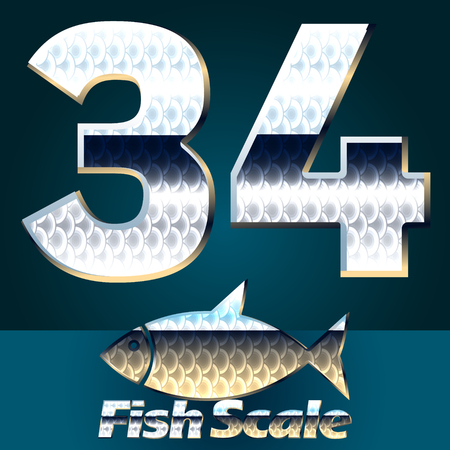 gloss: Vector set of fish scale font. Stylish gloss font. Numbers 3 4